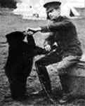 Photograph of A.A. Milne with  a real life bear called Winnipeg