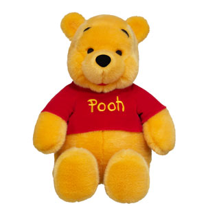 Photo of a Build your own Pooh bear