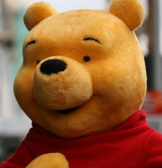 Photo of a real Pooh bear