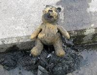 Stuffed Pooh bear blocks Irish drain